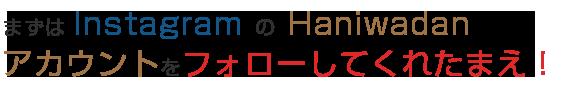 まずはInstagramのHaniwadanアカウントをフォローしてくれたまえ!